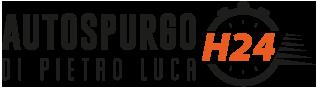 Logo autospurgo Luca Di Pietro